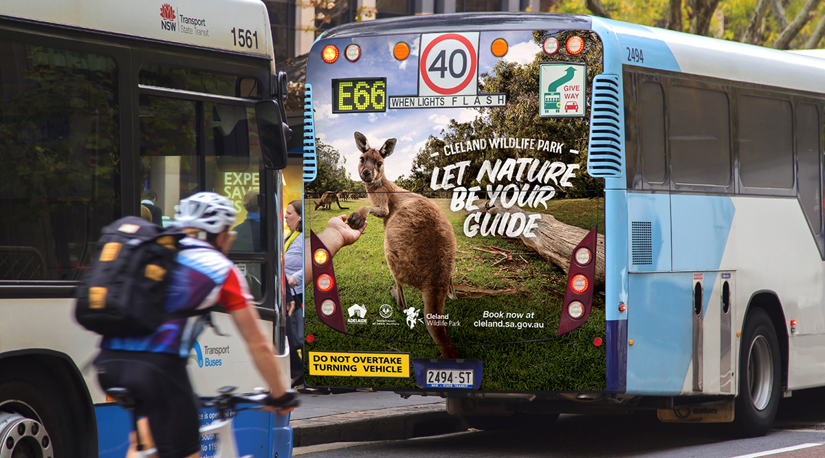 Bus Back mockup Kangaroo