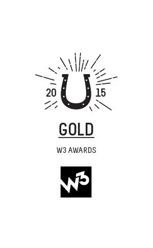 NEW-Awards-space-300x485px-16-2014-2015-W3_Gold_award.png