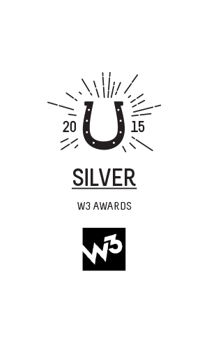 NEW-Awards-space-300x485px-16-2014-2015-W3_Silver_award.png
