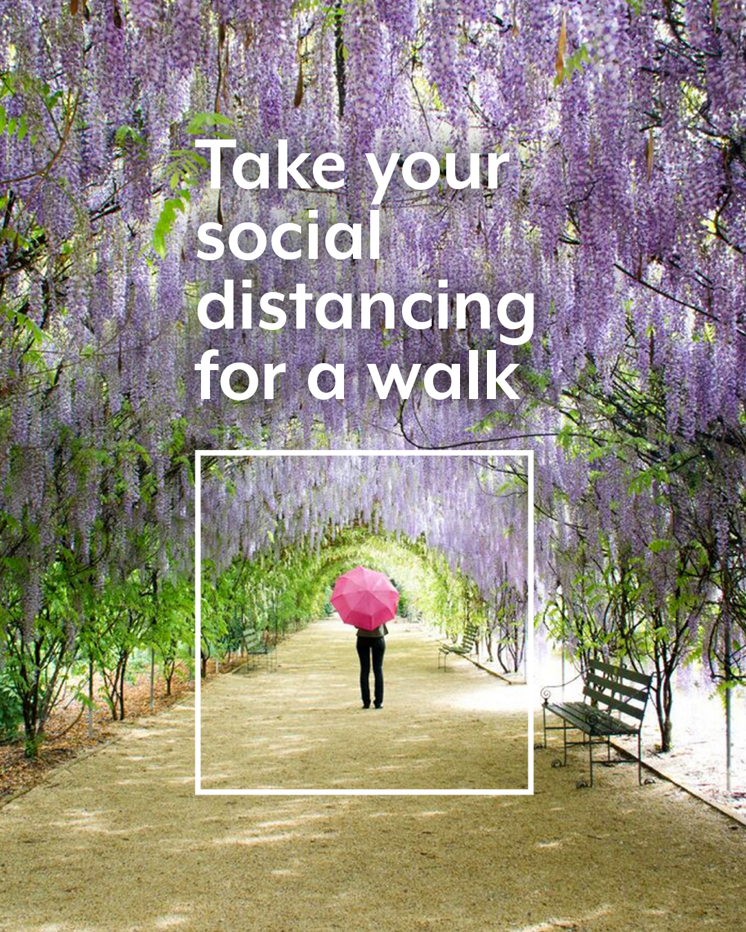 SAT40418_SocialPost_Botanic Gardens_01